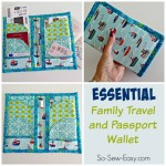Travel and passport wallet b